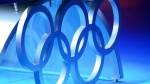 FIS active in IOC Commissions